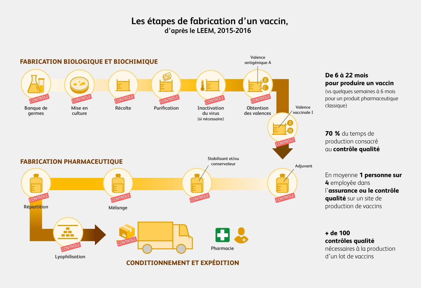 Cycle de production d'un vaccin d'après le LEEM